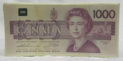 Canada 1000 Dollar Bill Coin Bank